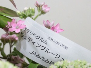 20130916jaminamishinsyu10