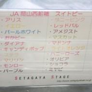 ss20140217jaokayama00
