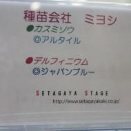 ss20140630miyoshi02