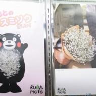 20141110kumamoto