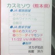 ss20141108kumamoto11