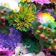 ss20160829harutaflower18