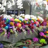 ss20160831harutaflower03