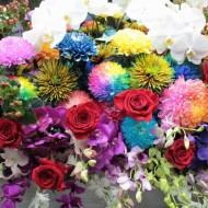 ss20160831harutaflower05
