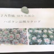 20161207jatoyohashi02